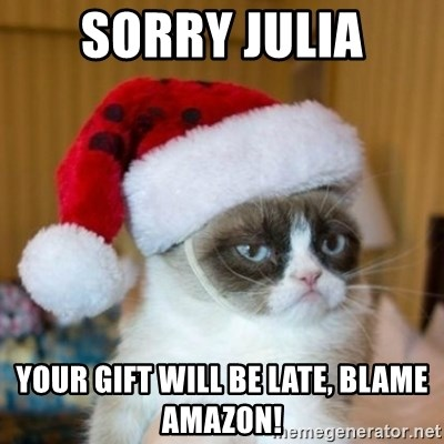 Grumpy Cat Santa Hat - Sorry Julia Your gift will be late, Blame Amazon!