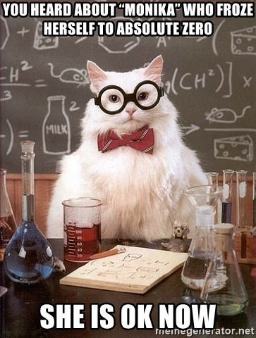 """Chemist cat - You heard about """"monika"""" who froze herself to absolute zero She is 0K now"""