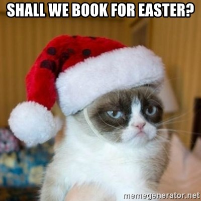Grumpy Cat Santa Hat - shall we book for easter?