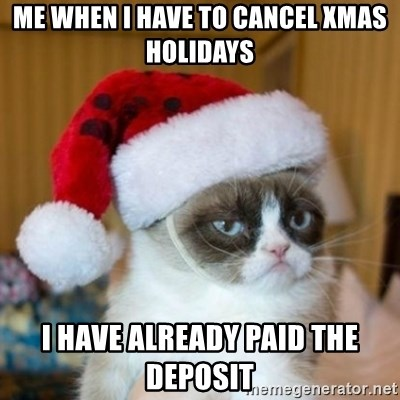 Grumpy Cat Santa Hat - me when I have to cancel xmas holidays I have already paid the deposit