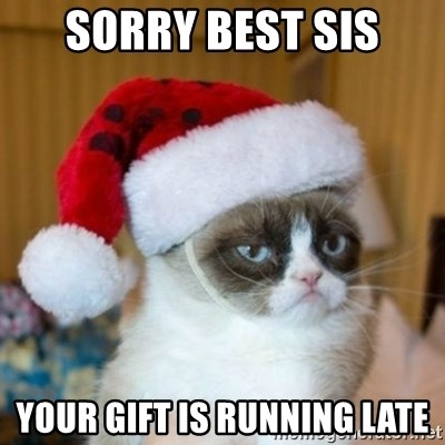 Grumpy Cat Santa Hat - Sorry best sis Your gift is running late