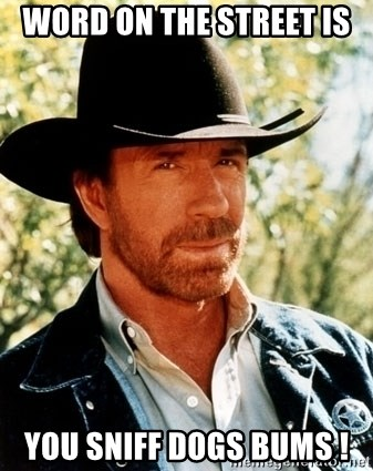 Brutal Chuck Norris - word on the street is  you sniff dogs bums !