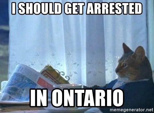 newspaper cat realization - I should get arrested in Ontario
