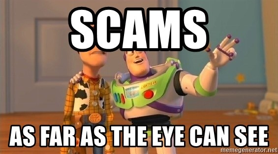buzz as far as the eye can see - SCAMS As far as the eye can see
