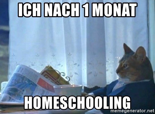 newspaper cat realization - ich nach 1 monat  homeschooling