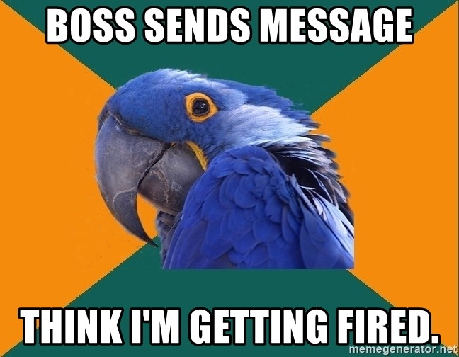 Paranoid Parrot - Boss sends message Think I'm getting fired.