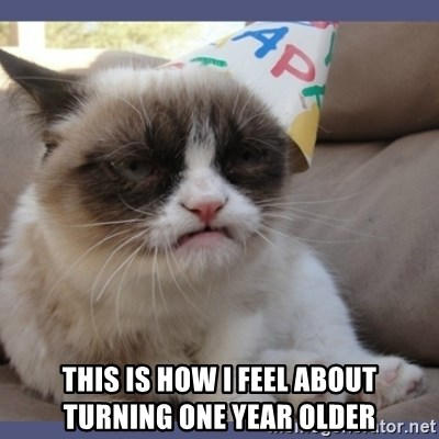Birthday Grumpy Cat - this is how i feel about turning one year older