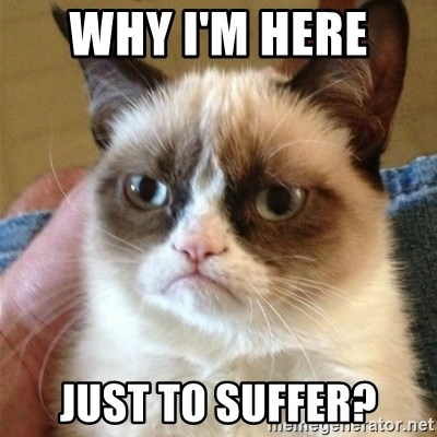 Grumpy Cat  - Why I'm here  Just to suffer?