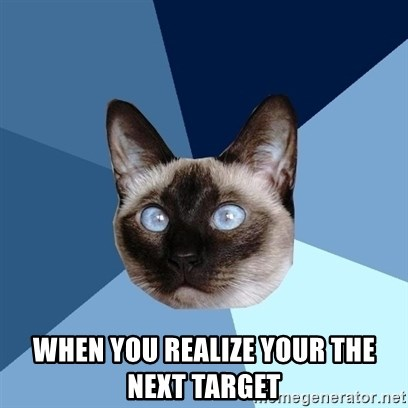 Chronic Illness Cat - When you realize your the next target