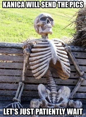 Waiting Skeleton - Kanica will send the pics Let's just patiently wait