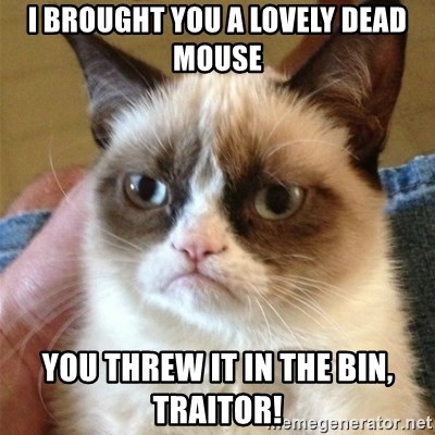 Grumpy Cat  - I Brought you a lovely dead mouse You THREW it in the bin, traitor!