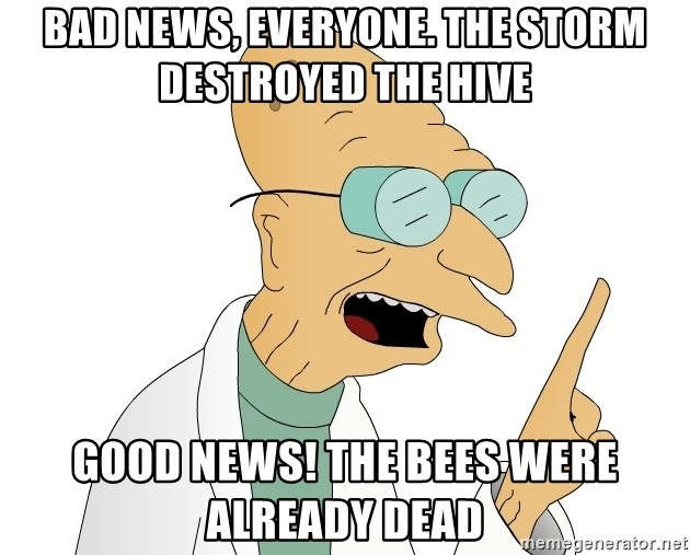 Good News Everyone - Bad news, everyone. The storm destroyed the hive Good news! The bees were already dead