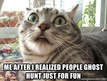 scared cat - Me after i realized people ghost hunt just for fun
