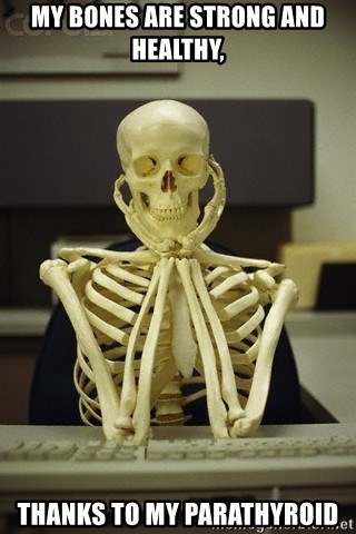 Skeleton waiting - My bones are strong and healthy, thanks to my parathyroid