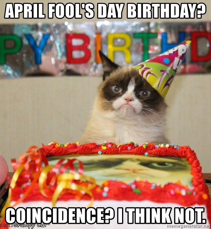 Grumpy Cat Birthday hat - April Fool's Day birthday? Coincidence? I think not.