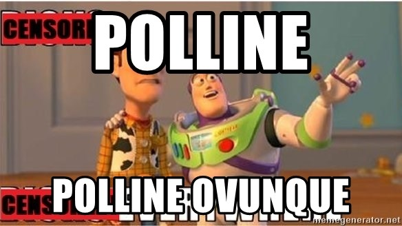 Toy Story Everywhere - Polline Polline ovunque