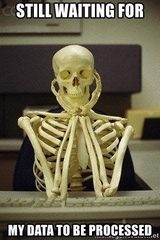 Skeleton waiting - Still waiting for  my data to be processed