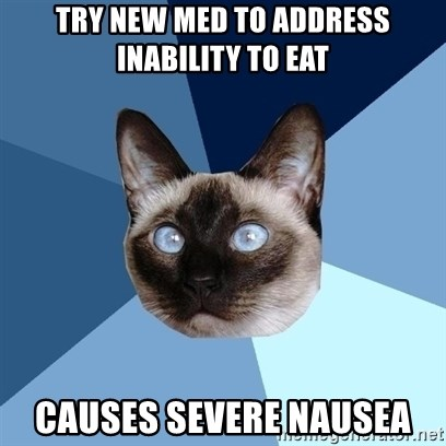 Chronic Illness Cat - Try new med to address inability to eat Causes severe nausea