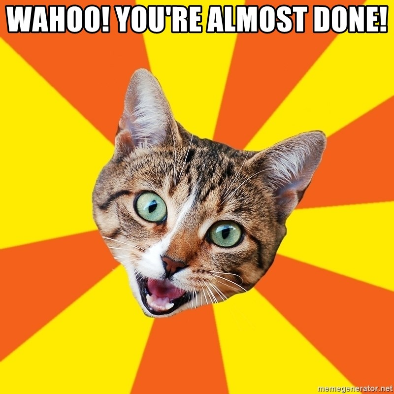 Bad Advice Cat - Wahoo! You're almost done!