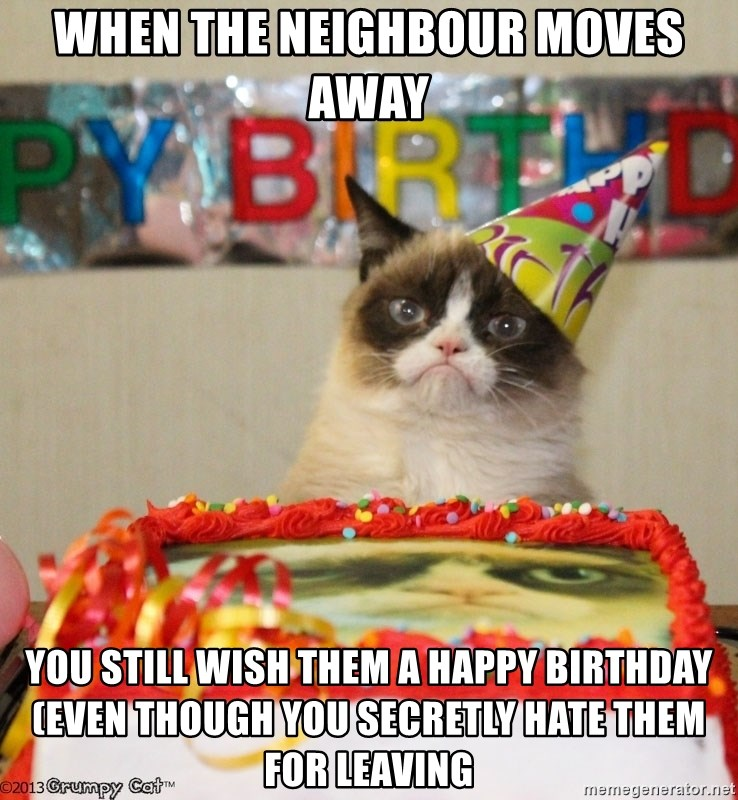 Grumpy Cat Birthday hat - When the neighbour moves away You still wish them a Happy Birthday (even though you secretly hate them for leaving