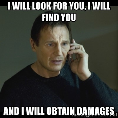 I will Find You Meme - I will look for you, I will find you And I will obtain damages