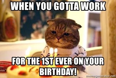 Birthday Cat - When you gotta work For the 1st ever on your birthday!