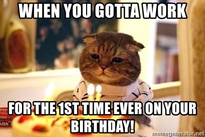 Birthday Cat - When you gotta work For the 1st time ever on your birthday!
