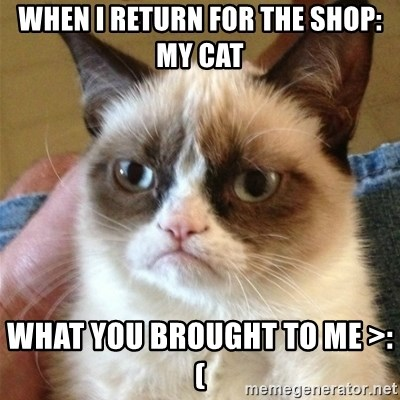Grumpy Cat  - when i return for the shop: My cat WHAT YOU BROUGHT TO ME >:(