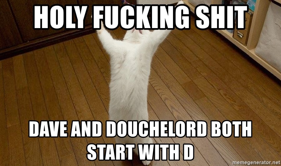 praise the lord cat - HOLY FUCKING SHIT DAVE AND DOUCHELORD BOTH START WITH D