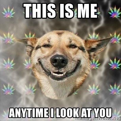 Stoner Dog - This is me Anytime i look at you