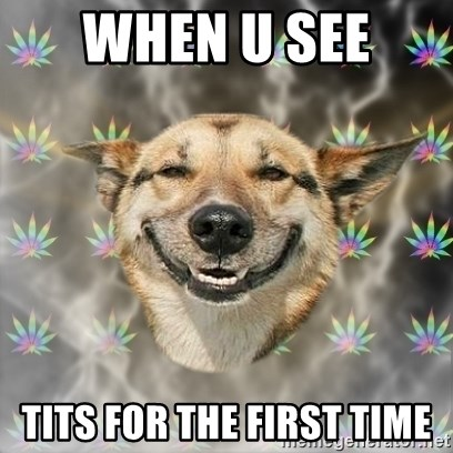 Stoner Dog - When u see  tits for the first time