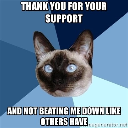 Chronic Illness Cat - THANK YOU FOR YOUR SUPPORT AND NOT BEATING ME DOWN LIKE OTHERS HAVE