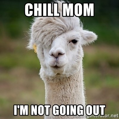Hipster Llama - Chill mom I'm not going out