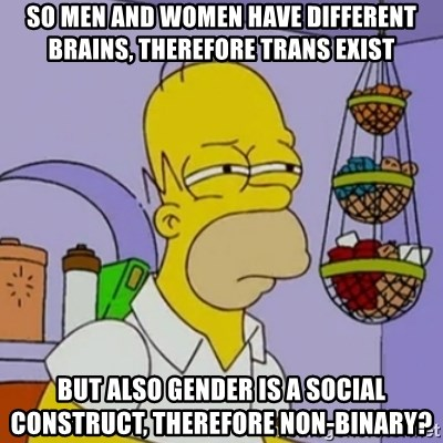 Simpsons' Homer - So men and women have different brains, therefore Trans Exist But also gender is a social construct, therefore non-binary?