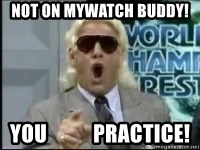 Ric Flair Woo - NoT On MyWatch buddy!  You           Practice!